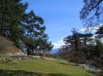 Botanischer Garten Lausanne