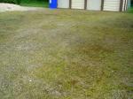 Herbizid im Kleingarten