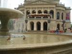 Nilgänse Alte Oper