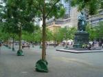 Schnurbäume auf Goetheplatz