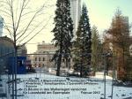 23 Bäume Opernplatz
