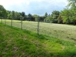 Grüneburgpark Sichtachse mit Zaun