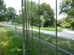 Grüneburgpark zwei Jungbäume hinter Bauzaun
