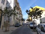 Lissabon junge Strassenbäume