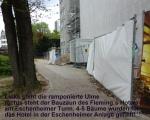 Ulme Nr. 269 Eschenheimer Anlage