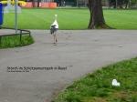 Storch Stadtpark 1